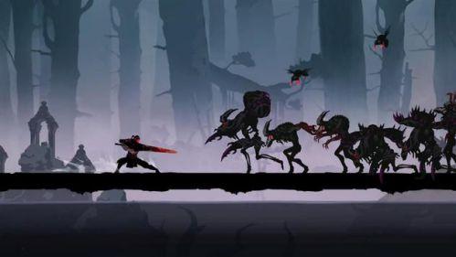 Shadow of Death 2 anh hùng hắc ám