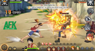 One Piece Burning Will